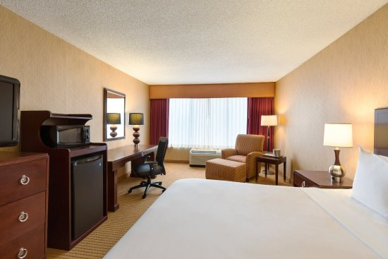 Radisson Hotel Rochester Riverside: Guest Room