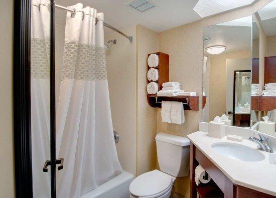 Hampton Inn Madison East Towne Mall Area: Guest Bathroom