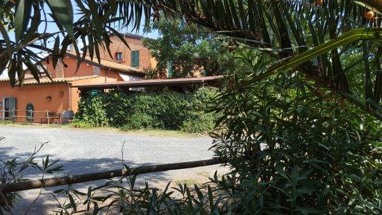 Розиньяно-Мариттимо, Италия: corpo centrale/giardino dove si cena/sala colazione-cucina