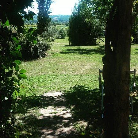 Monteleone d'Orvieto, Włochy: IMG_20160813_155556_large.jpg