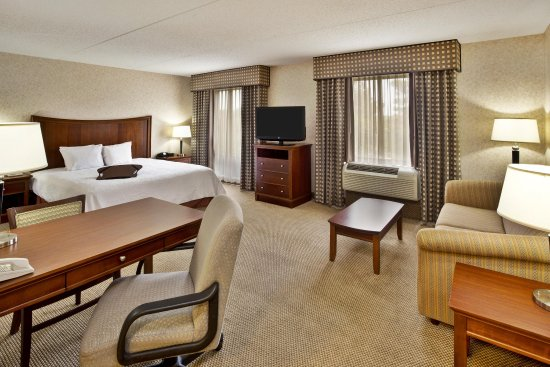 Hampton Inn & Suites Richmond/Virginia Center: Queen Sofa
