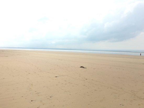 Braunton, UK: Saunton Sands Beach