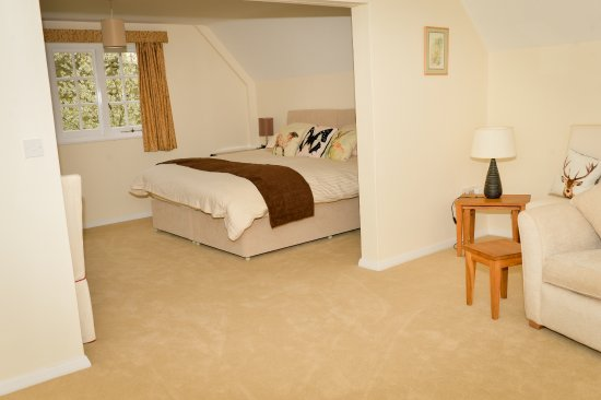 Horsted Keynes, UK: The horncastle suite or family room
