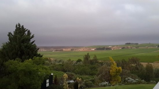 Vredendal, África do Sul: View over vineyards