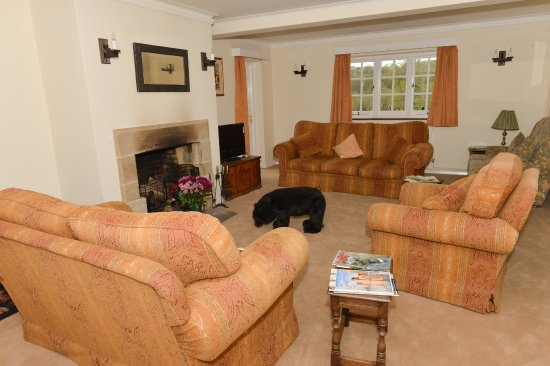 Horsted Keynes, UK: Relax in the lounge