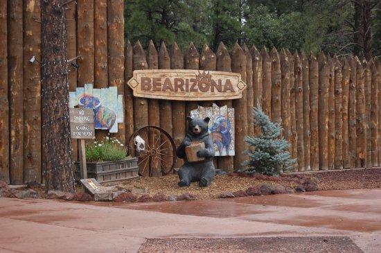 Williams, AZ: All'interno del parco