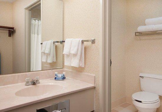 Hudson, Висконсин: Guest Bathroom