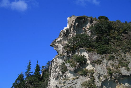 Leigh, Nueva Zelanda: Shakespeare's Cliffs. Do you see a resemblance??