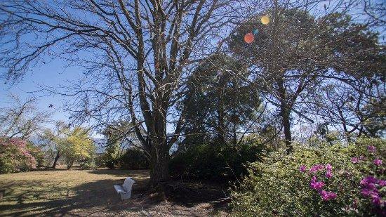 Landscape - Picture of The Kranz Guest House, Sabie - Tripadvisor