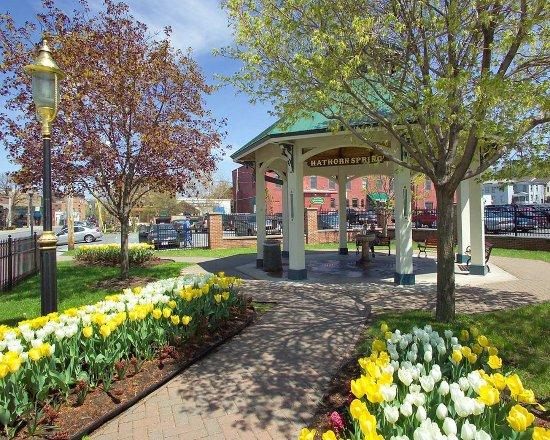 Hilton garden inn saratoga springs updated 2017 prices - Hilton garden inn saratoga springs ny ...