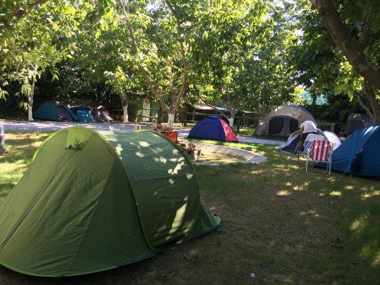 Barrel Camping