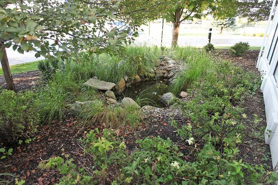 Chesterton, IN: Exterior Pond