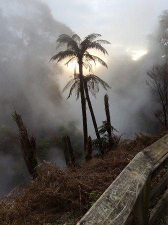 Waikite Valley Thermal Pools: photo0.jpg