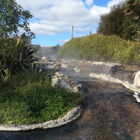 Waikite Valley Thermal Pools: photo4.jpg