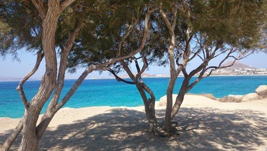 Maragas Beach Photo