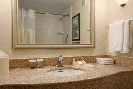 Ronkonkoma, NY: Guest Room Bathroom