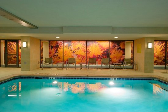 Hilton Garden Inn Atlanta Downtown: Indoor Pool