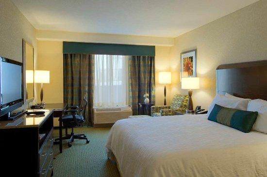 Hilton Garden Inn Atlanta Downtown: Standard King Bedroom