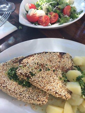 la bomba croatia tuna with sesam and la bomba salad