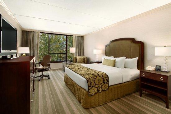 Rye Brook, Nowy Jork: King Bed Guestroom
