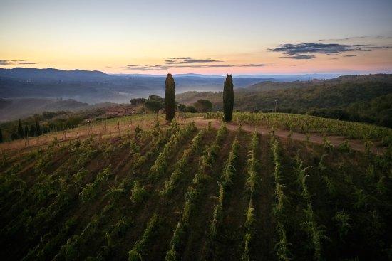 Vagliagli, อิตาลี: panorama