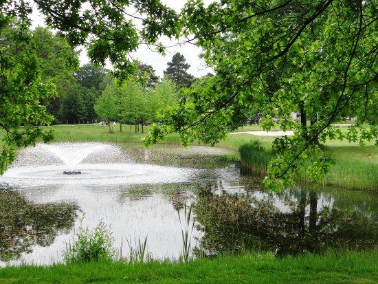 Soestduinen, Nederland: Golf course