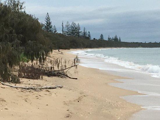 Woodgate, Australia: photo7.jpg