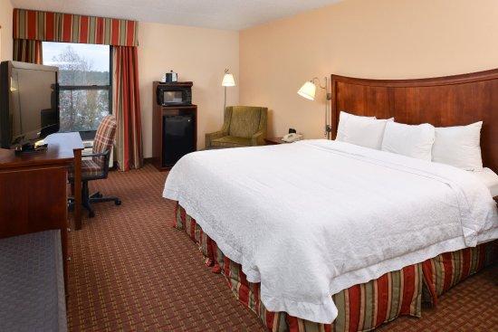 Henderson, Carolina del Norte: king room standard