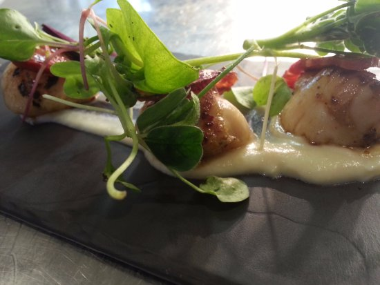 the mill race cornish king scallops and cauliflower puree