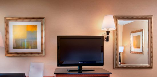 Hampton Inn Alexandria/Pentagon South: Flat Screen Televisions