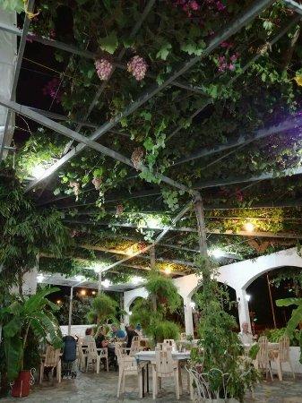 Golfer Restaurant : FB_IMG_1474531852819_large.jpg