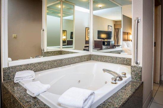 Monroe, Мичиган: Room Whirlpool