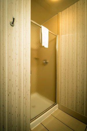 Monroe, MI: Guest Room Shower