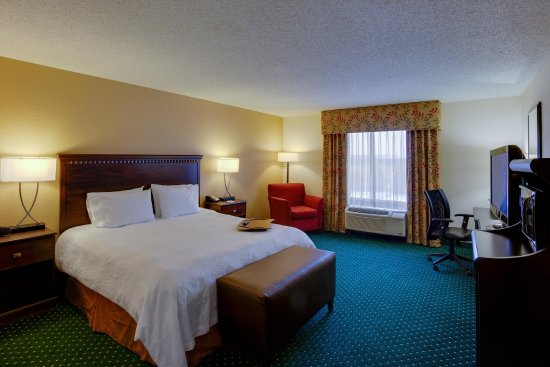 Garden City, estado de Nueva York: King Guestroom