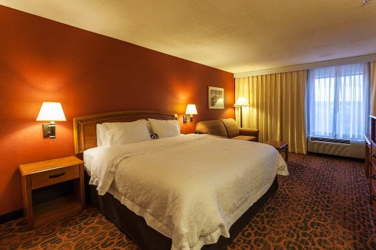 Castle Rock, CO: Hotel King Room