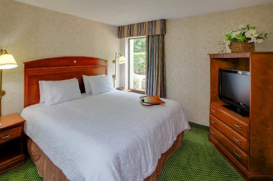 Hampton Inn Chester : 1 King Bed 1 Bedroom Suite