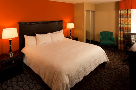 Hampton Inn Asheville - Tunnel Road: King Bed Mobility and Hearing Accessible Room with Tub