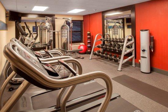 Stevensville, MI: Fitness Center Weights