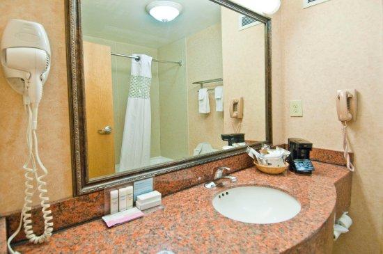 Canton, Mississippi: Hampton Inn Canton Bathroom Vanity