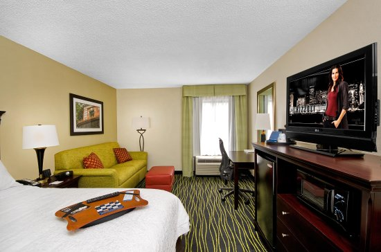 Hampton Inn Columbia-I-26 Harbison Boulevard: King Bed Study with Sofabed