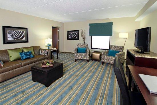 Hampton Inn Hagerstown: Suite