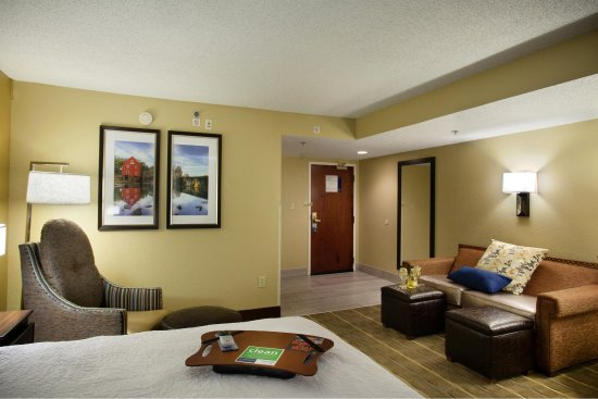 Hampton Inn Atlanta / Peachtree Corners / Norcross : Studio Sofa Bed Seating Area