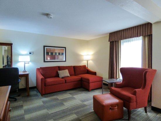 Charleston, Virginia Occidental: Room with Sofa