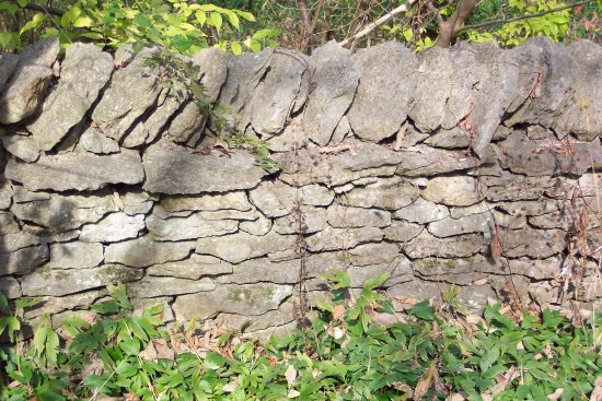 McConnell Springs: Old Stone Walls Remain