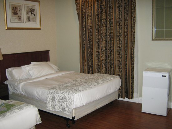 Ottawa Inn: I slept so well on this bed. Black-out sleep.
