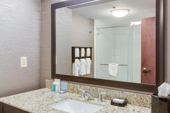 Hampton Inn Bellevue / Nashville I 40 West: Bathroom Vanity