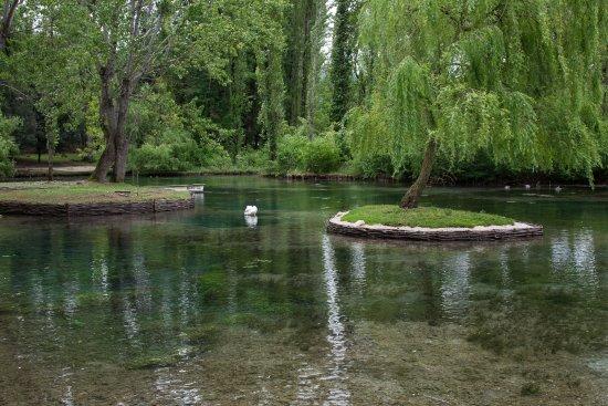 Campello sul Clitunno, Italia: fonti del clitunno 9