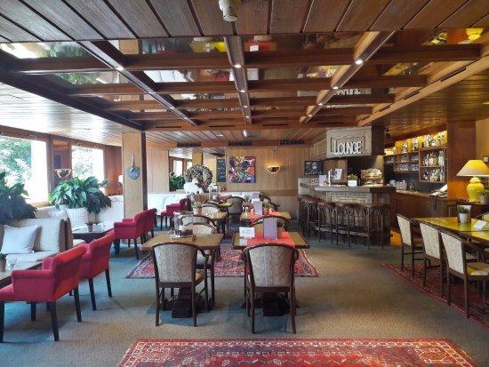 Hotel de la Foret : Bar