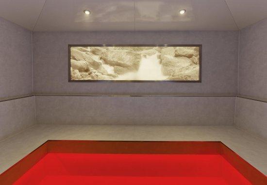 Vienna Marriott Hotel: Infra-Red Sauna