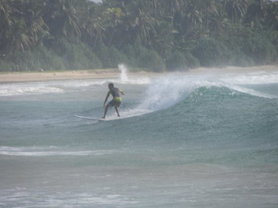 Tangalle, سريلانكا: bandula surfing school